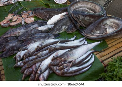 Freshwater in the canals and rivers of Thailand. An important source of protein for local people.