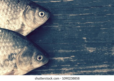 Freshwater fish on the table