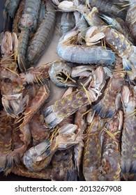 freshwater lobsters or crayfish,Huge Lobster,topview.