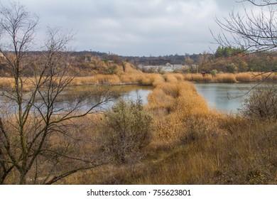 Freshwater pond in the Ukrainian steppe. Zaporozhye region, Ukraine. November 2017