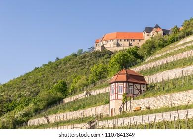 Freyburg Neuenburg Schloss Weinberg