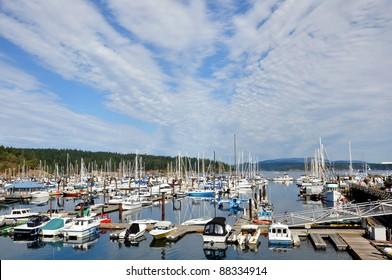 Friday Harbor and marina