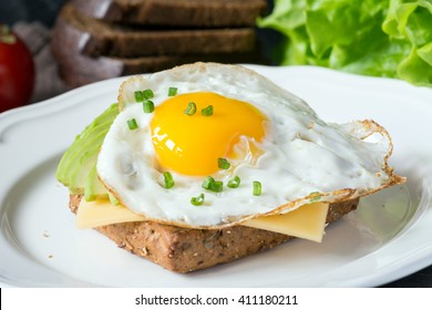 Fried egg, avocado and cheese on whole wheat toast. Delicious and healthy breakfast. Selective focus