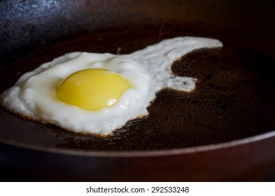 Fried Egg in a Frying Pan Homemade Food