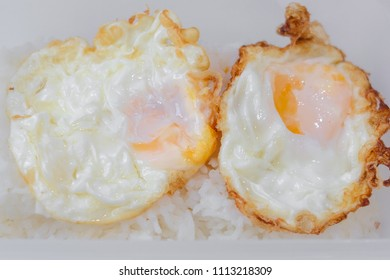 fried egg on rice in box isolated selective focus