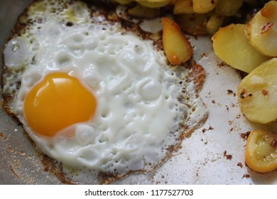 fried egg with fried potatoes