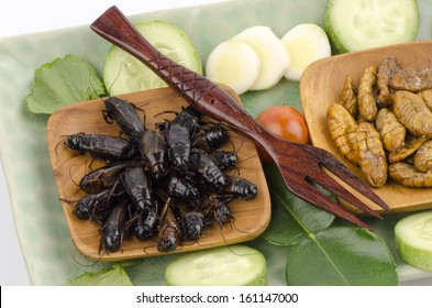 fried Ensiferum (Orthoptera), a nutritious diet, especially in the matter of energy, protein, fat and minerals.