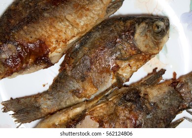 fried fish on plate