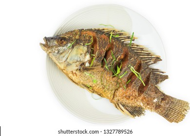 fried fish  in plate  isolated on white background