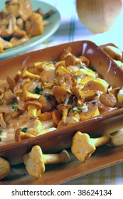 Fried golden chanterelles in plate