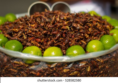 Fried grasshoppers (chapolenas) and lemon at a market, Mexico