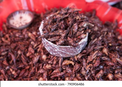 Fried Grasshoppers (Chapulines)  sold on a central local market as a snacks in Oaxaca, Mexico