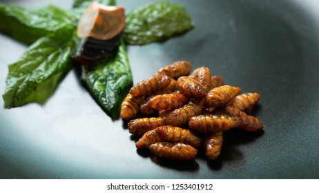 Fried insect in a black ceramic bowl on the wooden table. Concepts for edible insects contributing to food security and food revolution. Close-up, Selective focus.