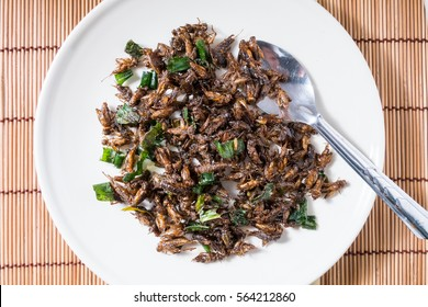 fried insect with Pandan