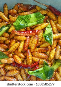 Fried insects (caterpillars chrysalis) crispy, topped with sauce and ground pepper.
