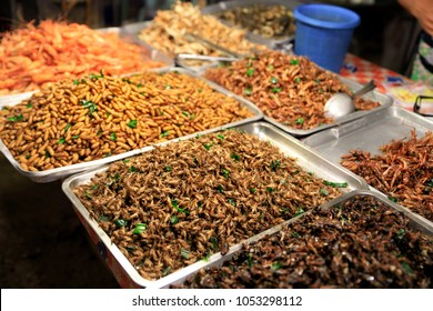 Fried insects (locust, worm, cricket, pupa, and giant waterbug) as street food on a vendor stall, Thailand. This exotic form of protein is the future of the food industry.