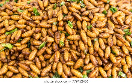 Fried insects protein rich food, Bamboo worm insect crispy with sauce and garnish thai pepper powder.