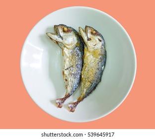 fried mackerel fish on pastel color background