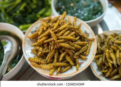 Fried in oil silkworm. Rich protein insert food