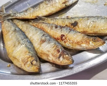 Fried sardines served in metallic tray