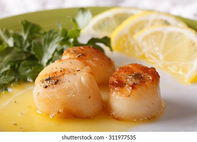 Fried scallops with sauce and lemon on a plate macro. horizontal