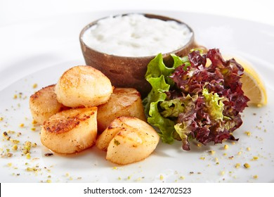 Fried Sea Scallop with White Sauce on Elegant Restaurant Plate Isolated on White Background. Gourmet Clams Meat with Fresh Lettuce Leaves Close Up