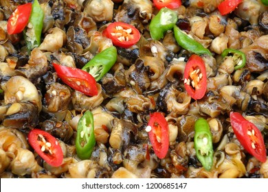 Fried sea snails with red and green hot chili