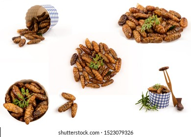 Fried Silkworm pupae,Thai Insects on white background.(image group)
