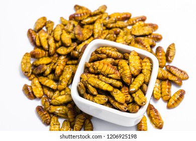 Fried silkworm's pupa in a cup on the white background.