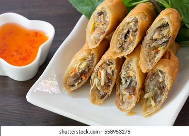 Fried Spring rolls on white dish in the kitchen / Selective focus image