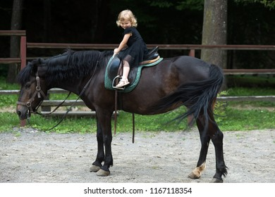 Friend, companion, friendship. Girl ride on horse on summer day. Equine therapy, recreation concept. Child smile in rider saddle on animal back. Sport, activity, entertainment. riding school