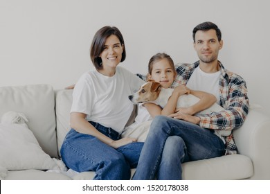 Friendly family pose together at sofa, enjoys domestic atmosphere. Father, mother, their little daughter and pedigree dog spend weekend at home, pose in living room, have happy face expressions