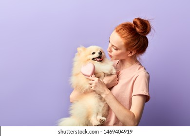 friendly good looking girl combing the dog's hair, close up portrait, isolated blue background, studio shot.