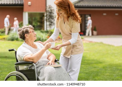 Friendly nurse giving tea to disabled senior woman in a wheelchair in the garden
