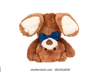 Friendly plush toy brown classic teddy bear turned upside down with blue bow staying in handstand isolated on white background. Photography for children's store catalog. Eco and safe kid's products