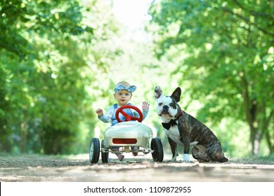 friends - baby girl with dog in summer