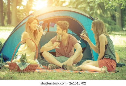 friends camping together and drinking red wine. concept about camping, nature and vacations