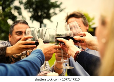 Friends drinking together for celebration