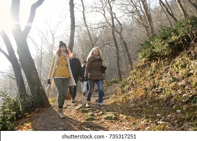 Friends enjoying a hike in a forest;