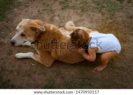 Friends forever, dog and baby.  Baby boy put his head on the big brown dog and dog is happy with this. Toddler hugging the dog. Friendship and love between babies and animals concept. Best friends.