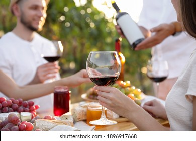 Friends holding glasses of wine and having fun in vineyard, closeup