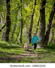 friends - little girl with corgi dog walking outdoors at sunny spring day