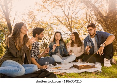Friends in the park making a picnic