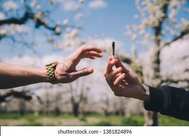 Amis passant un joint le jour d'un printemps ensoleillé