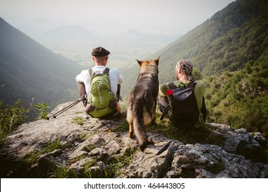 friends with their dog admires the scenery