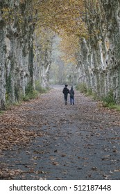 Friends walking on  country road in rural area through tunnel of autumn trees with dried leaves fall on the ground