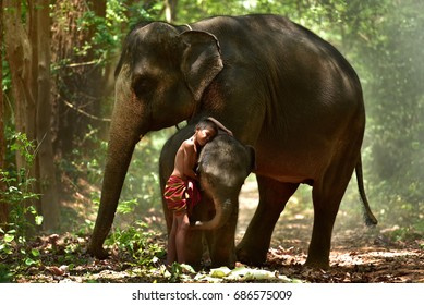 The friendship between the boy and his elephant