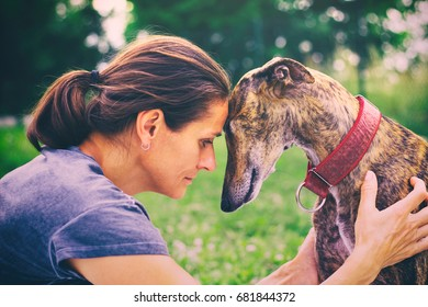 Friendship between woman and her dog. Cute greyhound with his owner. Profile portrait of spanish galgo and woman.
