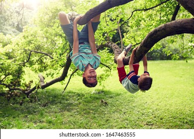 friendship, childhood, leisure and people concept - two happy kids or friends hanging upside down on tree and having fun in summer park