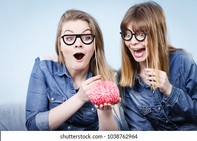 Friendship, human relations concept. Two crazy women friends or sisters wearing jeans shirts and eyeglasses on stick, thinking about solving problem holding fake brain